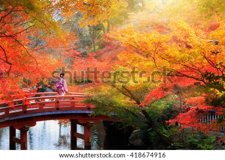 Wooden bridge in the autumn park, Japan autumn season, Autumn park in Kyoto, Japan, Autumn season concept, useful for japan autumn season. - stock photo