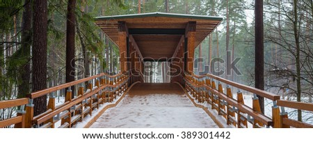 Wooden bridge in the forest park.