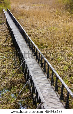 Wooden bridge or jetty near the sea shore surrounded by reed