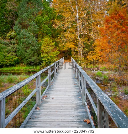 Wooden bridge over creek in autumn forest. Arboretum and Research Forest near Louisville, Kentucky, USA - stock photo
