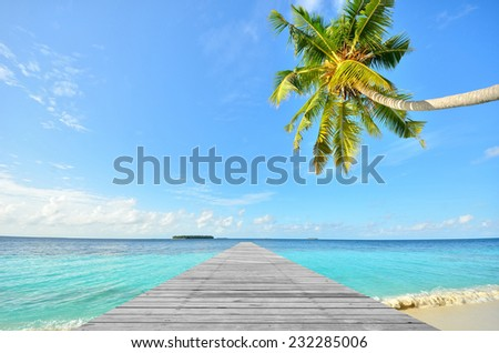 Wooden bridge pier and tropical seascape - stock photo