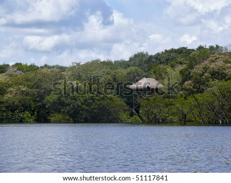 Wooden bungalow, Amazon river, Brazil - stock photo