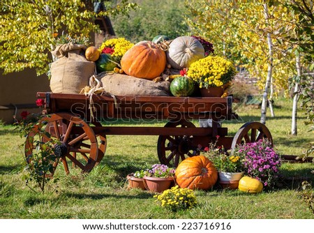 Wooden cart with autumn fruits. Autumn harvest festival - old cart with watermelons, sacks of potato, pumpkins and colorful autumn flowers. Landscape design in the country style for fall season. - stock photo