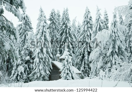 Wooden chapel in a snowy forest. Winter north