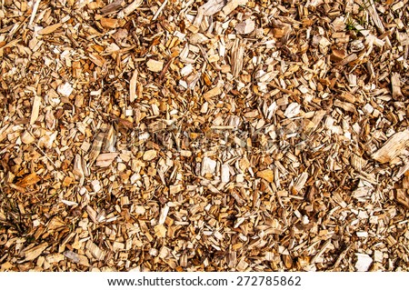 Wooden chips for combustion in a biomass firing plant - stock photo