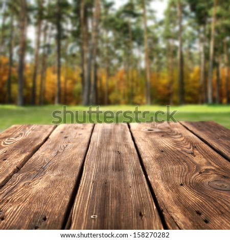 wooden desk and forest  - stock photo