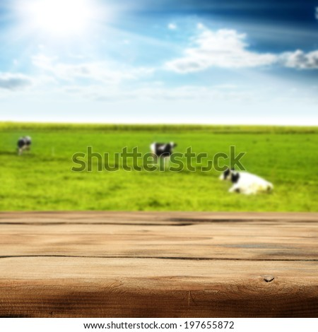 wooden desk cows and sky  - stock photo