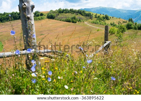 Wooden fence against the summer landscape in the Ukrainian Carpathian Mountains. - stock photo