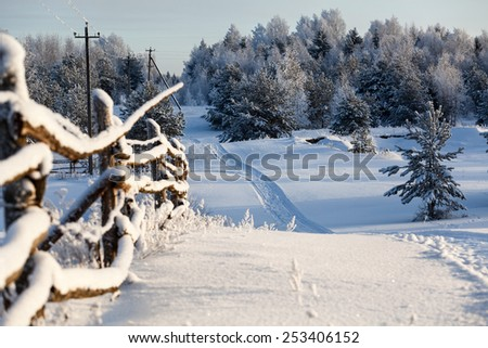 Wooden fence and snowy road into evergreen forest at winter time - stock photo