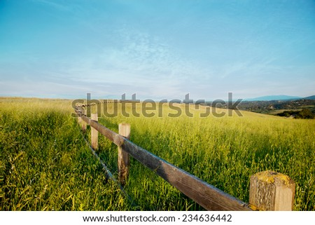 Wooden Fence in a Grass Field Against a Blue Sky (Stanford California) - stock photo