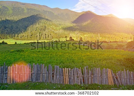 wooden fence in front of haystacks on a green agricultural meadow among the forest in mountains  - stock photo