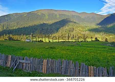 wooden fence on green meadow in mountains - stock photo