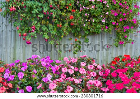wooden fence with flowers - stock photo