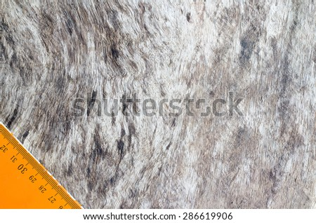 Wooden floor with a line of rulers. - stock photo