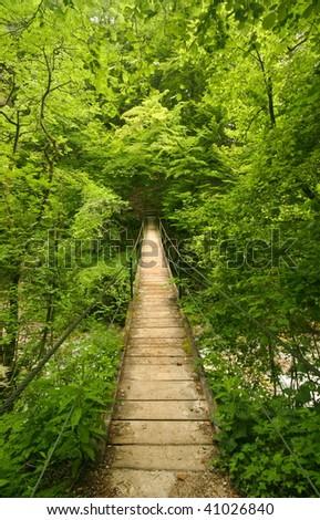 Wooden footbridge in forest - stock photo