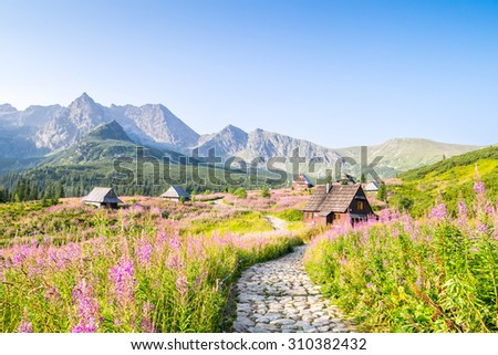 Wooden huts scattered on flowery meadow in Tatra Mountains National Park, Poland - stock photo