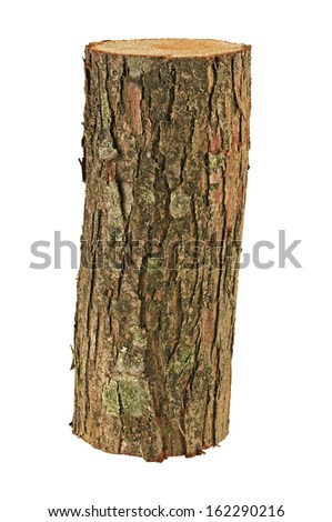 wooden log isolated - stock photo