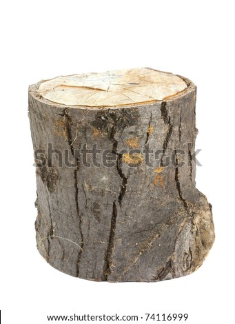 Wooden log isolated on white background - stock photo
