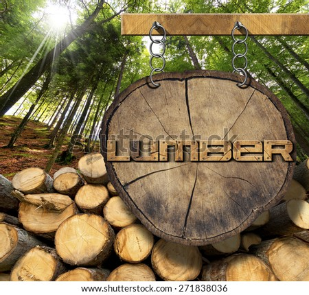 Wooden Logs with Forest and Lumber Sign. Trunks of trees cut and stacked and wooden sign with text lumber, hanging with metal chain on a wooden pole with green forest in the background with sun ray - stock photo