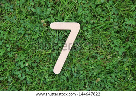 wooden number 7 on grass and clover background - stock photo