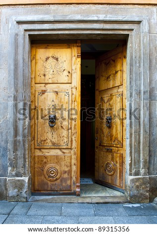 Wooden Open Door with Knockers In The Form Of a Lion's Head - stock photo
