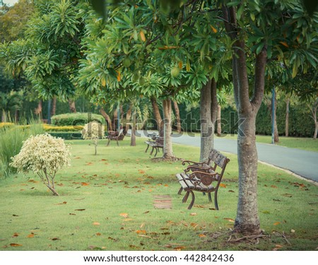 Wooden park bench under oak trees and near a lake - stock photo