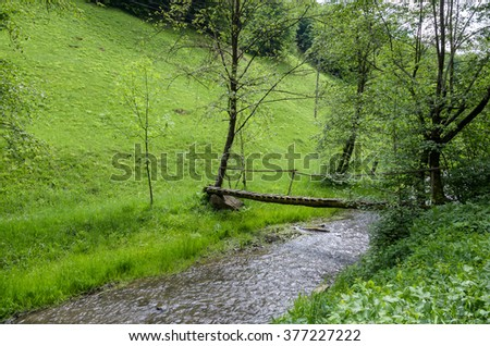 Wooden path crossing small river in the forest - stock photo