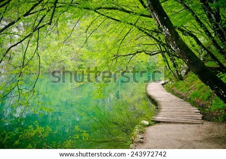 Wooden path  in Plitvice National Park, Croatia. Wooden footbridge across stream in the mountain forest, Croatia.  - stock photo
