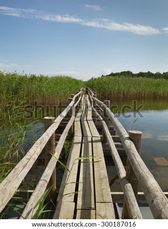 Wooden path on the Kemeri lake. - stock photo