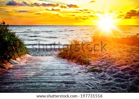 Wooden path over dunes at a beach  - stock photo