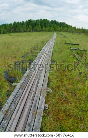 Wooden pathway in swamp to forest - stock photo
