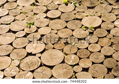 Wooden pavement made from rounded pieces of wood