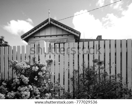 Wooden Picket Fence In Front Of Historical House With Rose Flower Plantings Traditional Australian Building