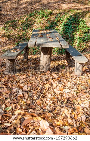 wooden picnic table in a park in autumn - stock photo
