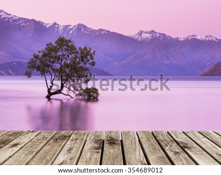 wooden pier and That Wanaka Tree at twilight - stock photo