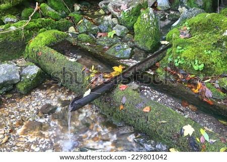 Wooden pipe carries water from a spring in autumn - stock photo