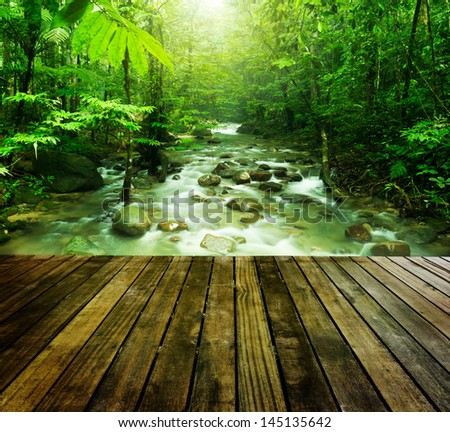 Wooden platform and tropical mountain stream with sunbeam in a morning. - stock photo