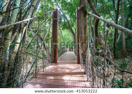 Wooden rope bridge under the shade of the forest in South Africa