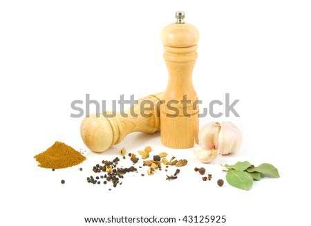 Wooden salt shaker and pepper grinder and set of spices on a white background. - stock photo
