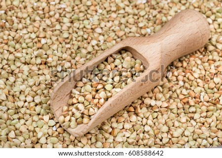 wooden scoop with uncooked green buckwheat grains. Healthy food. Cereal for diet, vegan and vegetarian nutrition