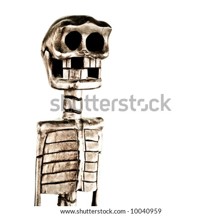 wooden skeleton isolated on a white background