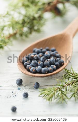Wooden spoon with juniper berries - stock photo