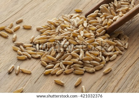 Wooden spoon with kamut kernels on the table
