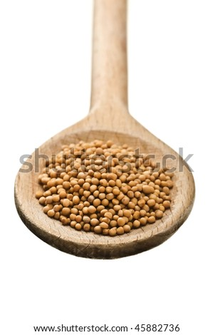 wooden spoon with mustard seeds isolated on white background - stock photo