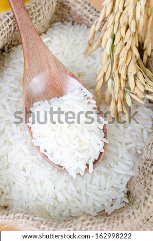 wooden spoon with raw rice and paddy rice in gunny bag - stock photo