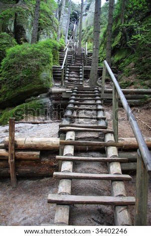 Wooden stairs leading up through forest and rocks