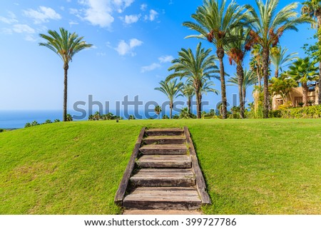Wooden steps and palm trees in tropical garden on Tenerife, Canary Islands, Spain - stock photo