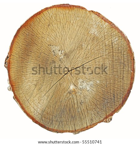 wooden structure for a background - stock photo