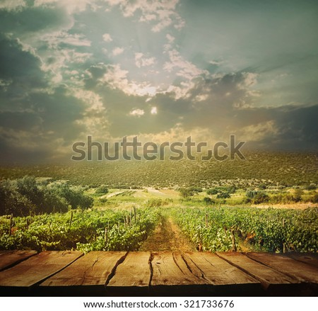 Wooden table. Autumn design with vineyard and empty display. Space for your montage. Autumn grapes harvest - stock photo