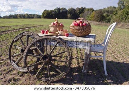Wooden table with a chair, autumn apples and antique wooden wheels on farm field. Harvest concept - stock photo